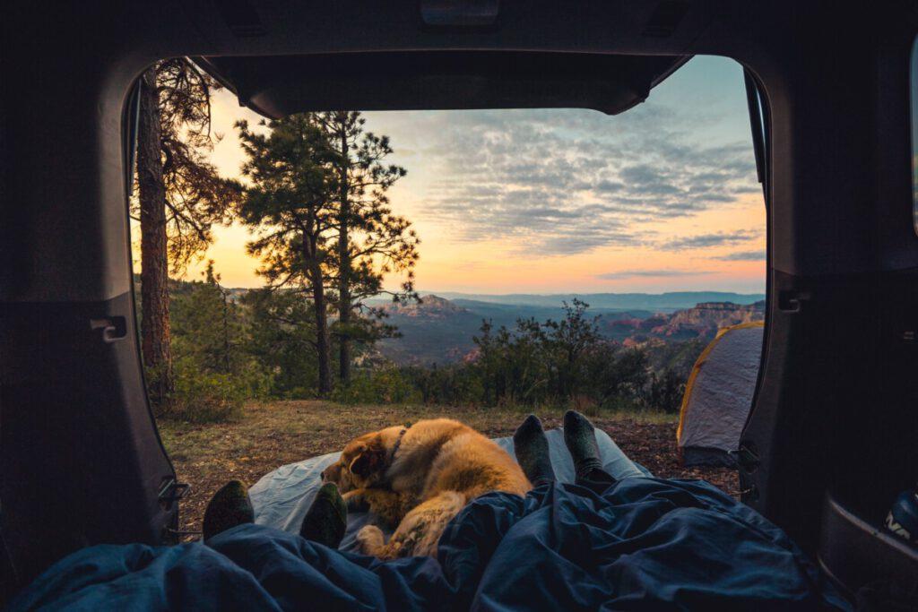 Hond slapend in de camper bij zonsondergang   Camper Deluxe