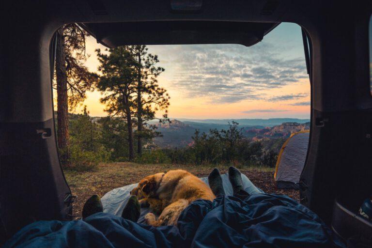 Hond slapend in de camper bij zonsondergang | Hondencampings | Camper Deluxe