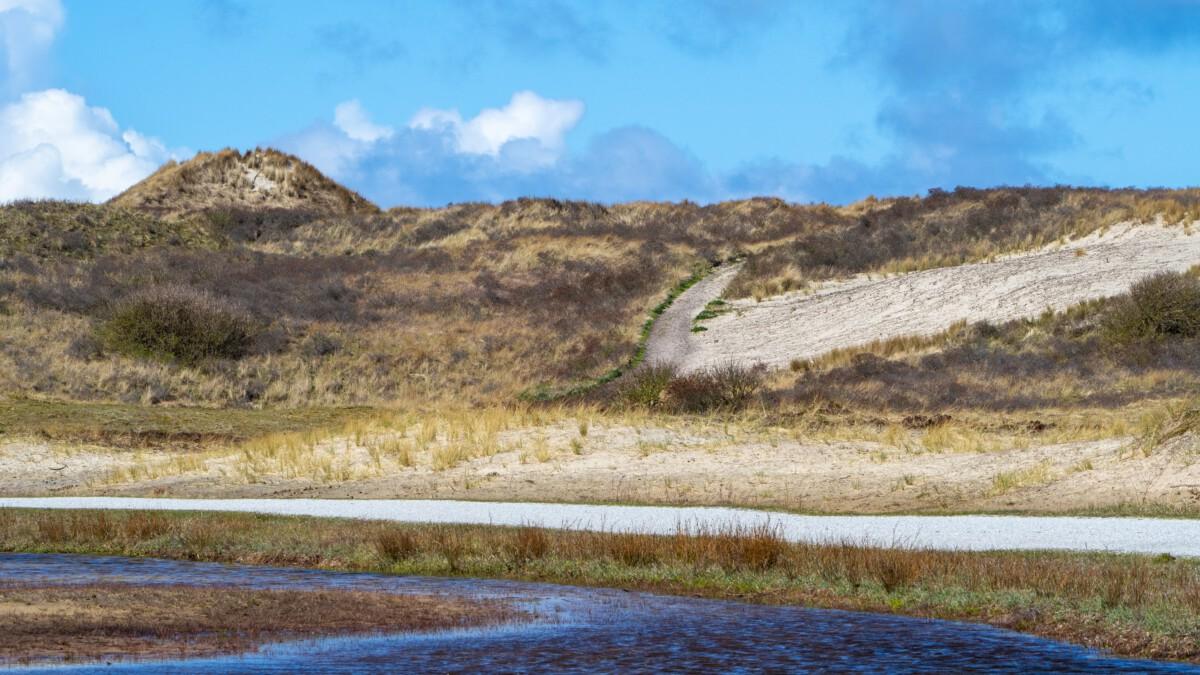 Camper huren in friesland | Zandbergen | Camper Deluxe